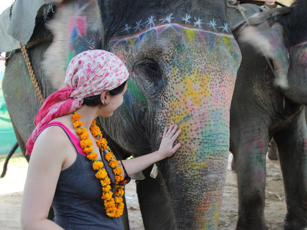 painted elephants India Carol Ketelson Delectable Destinations Culinary Tours