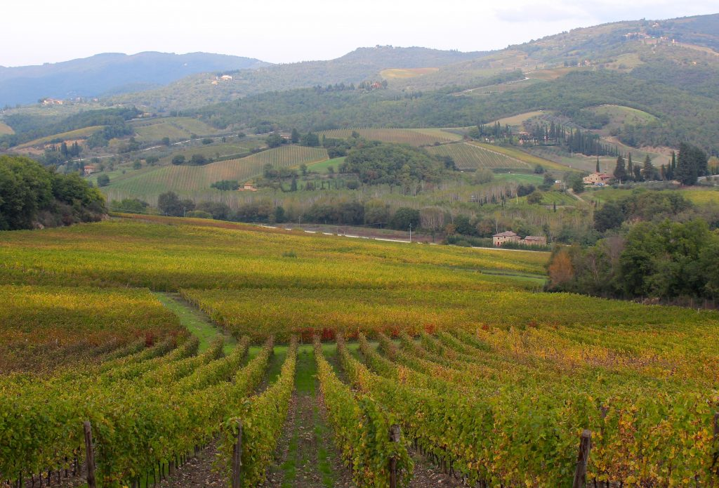 Marche Italy Carol Ketelson Delectable Destinations Culinary Tours