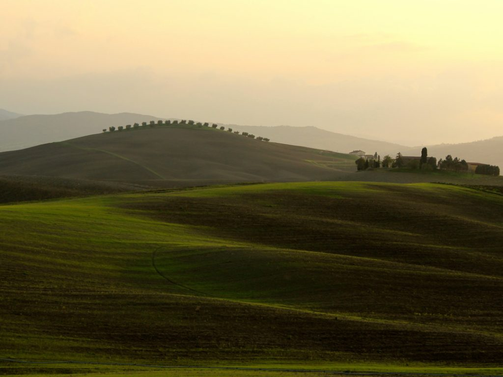 rolling hills of Tuscany Italy Carol Ketelson Delectable Destinations Culinary Tours
