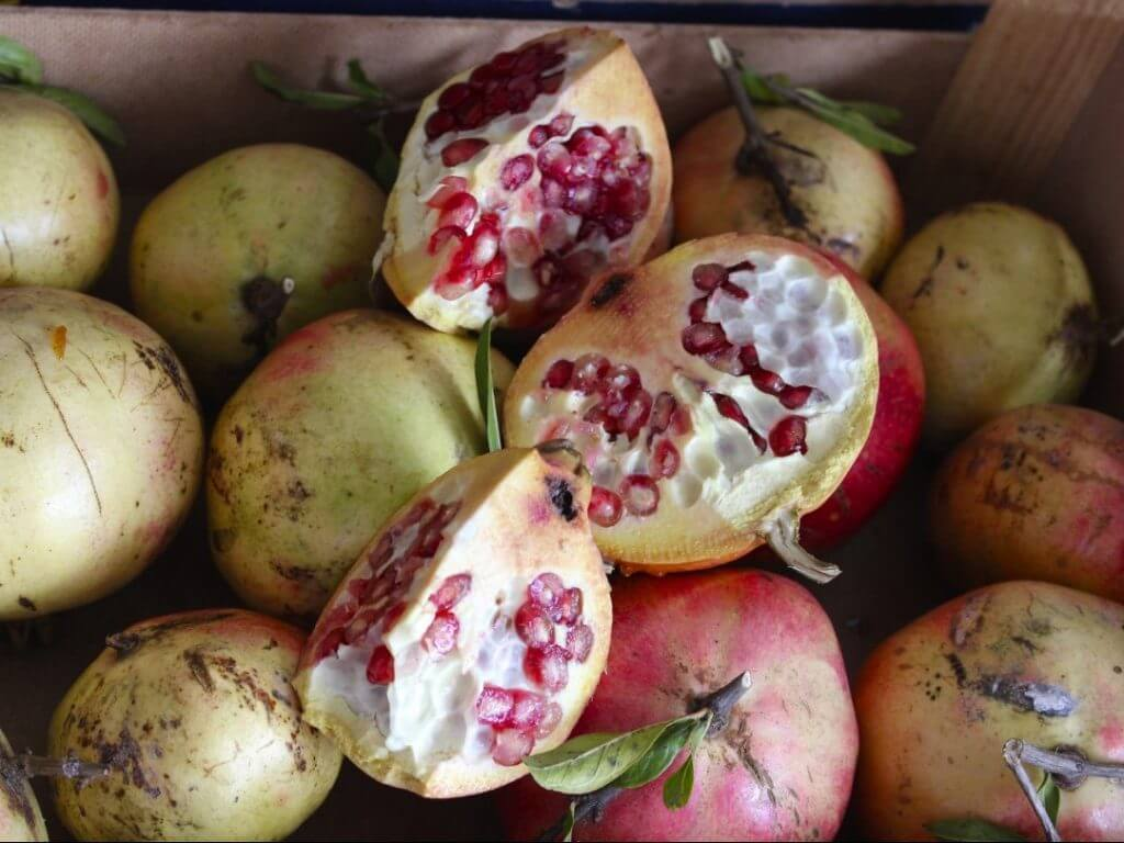 Pomegranate Puglia Italy Carol Ketelson Delectable Destinations Culinary Tours