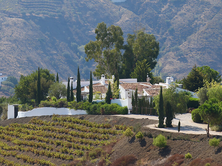 Cortijo El Carligto, Luxury Villa, Andalucia, Spain, Photos that will get you packing to Andalucia, Spain - Carol Ketelson, Delectable Destinations